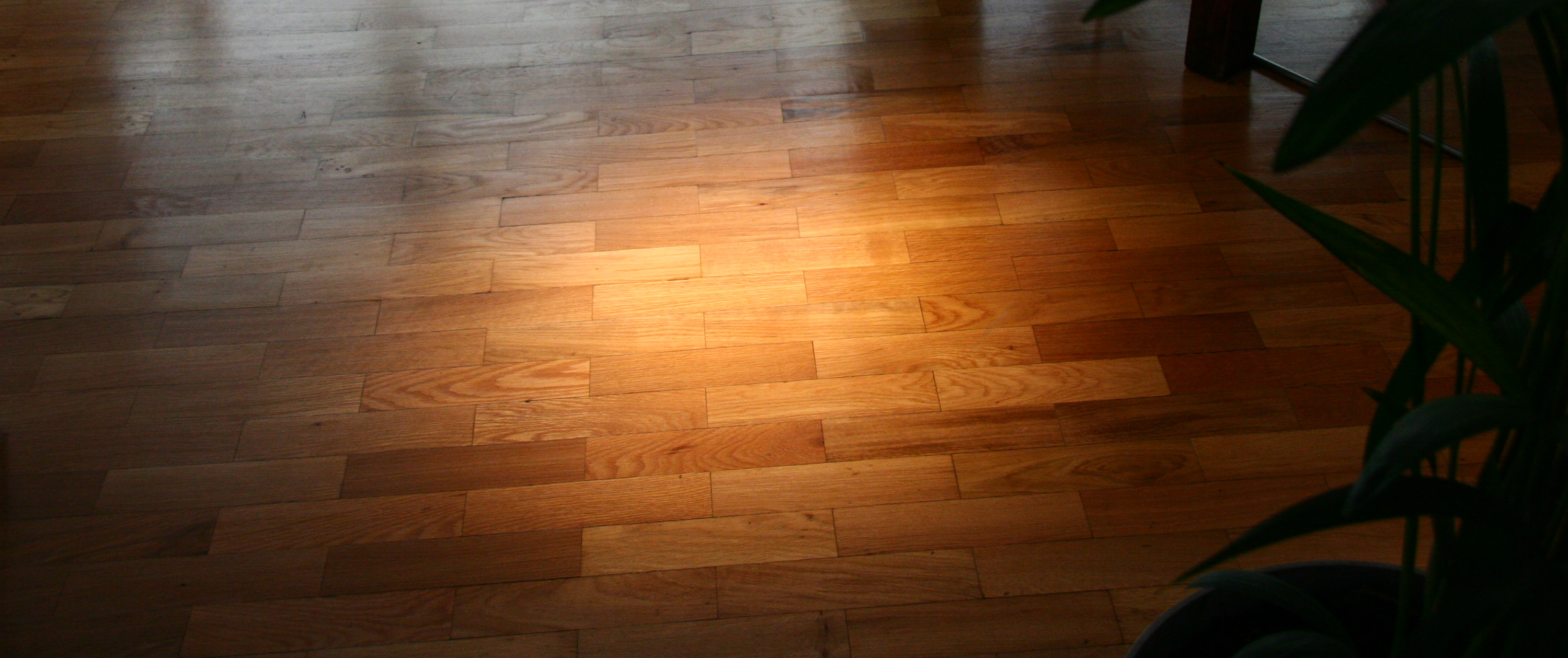 floor sanding slider background